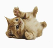 A Cute Cat Kids Clothes