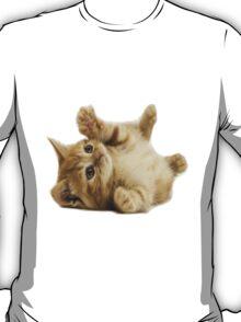 A Cute Cat T-Shirt