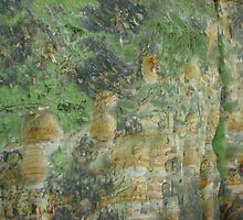 Limestone rock XI. - Stairs by Natas