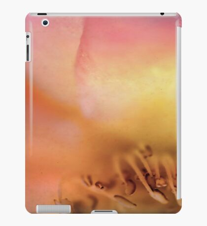Dreamers Never Die iPad Case/Skin