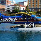 King Evening News Plane by islandphotoguy