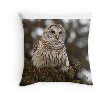 Barred Owl - Kanata Throw Pillow