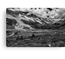 Viola Valley Canvas Print