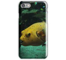 fish II iPhone Case/Skin