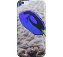 Fish IV iPhone Case/Skin