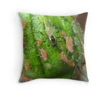 Wasp eating the Aphid Throw Pillow