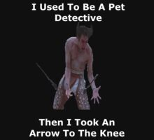 I Used To Be A Pet Detective, Then I Took An Arrow To The Knee by YouKnowThatGuy