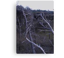 Skeleton Trees Canvas Print