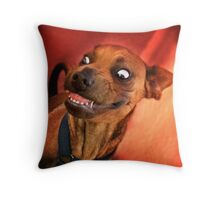 Dogs with game face on .15 Throw Pillow