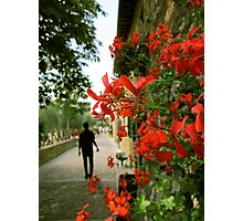 Wandering in Tuscany Photographic Print