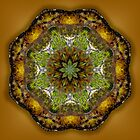 Riverside Mandala 1 by haymelter