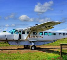 Safari Link - From Nairobi to Masai Mara by Charuhas  Images