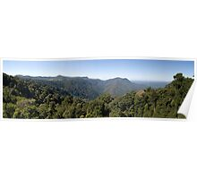 Dorrigo National Park Panorama Poster