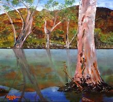 Mist on the Billabong by Estelle O'Brien