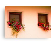 Cottage Windows Canvas Print