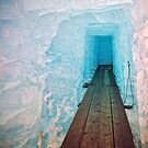 Ice cave 14 by tuetano