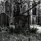 Old Stones by Talia Felix