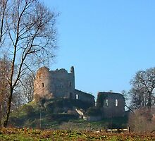 Hawarden Castle N.Wales by AnnDixon