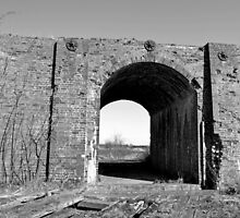 The Old Railway Bridge 2 [Black and White] by Sauropod8