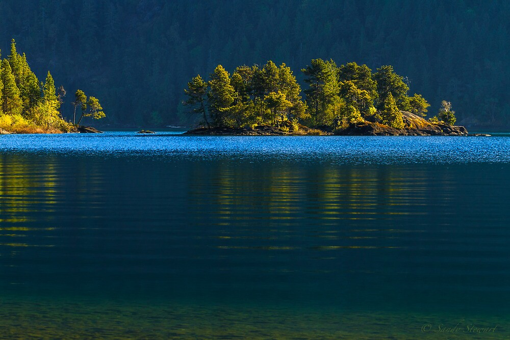 CATCHING THE LIGHT by Sandy Stewart