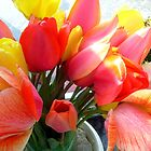 Spring bouquet of tulips by Ana Belaj