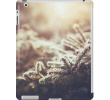 Hint of winter iPad Case/Skin