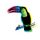 Rainbow Toucan by pjwuebker