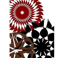 Spirals  by Stephanie Herrieven