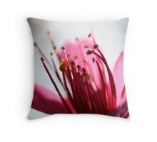 Cherry Pink and Apple Blossom White Throw Pillow