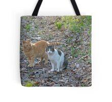 Puggy & Honey Tote Bag
