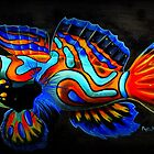 Manderine Fish on Black by Phyllis Beiser