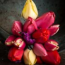 Fresh Spring Tulips Still Life by Edward Fielding