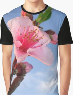 Single Peach Blossom Flower In Dawn Light Graphic T-Shirt