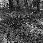 Pile of Sticks B&W by Artberry