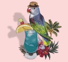 parrot in a hat by redboy