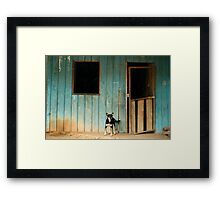 The Amazon 210 Framed Print