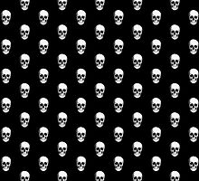 Human Skull on Black by TinaGraphics
