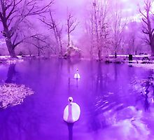 Purple Swans Landscape Photography Painting by printsbypixie