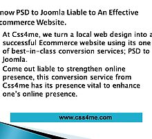 Css4me helps you develop an effective ecommerce web site  by css4me111
