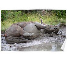 Fun in the mud! Poster