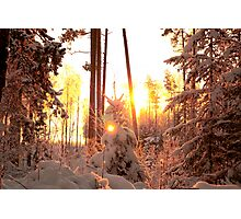 Winter on fire Photographic Print