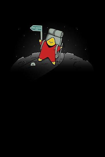 Star Trekking by perdita00