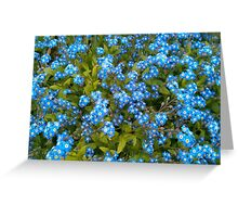 Forget me not! Greeting Card