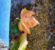 8/5 kerbiosity in blue by Evelyn Bach