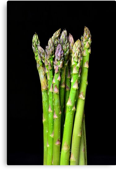 Green asparagus on black by 7horses