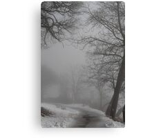 Fog and old trees Canvas Print