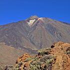 Mount Teide Tenerife by Avril Harris