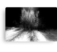 nature 4 black and white film Canvas Print