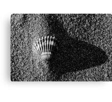 nature 5 black and white film Canvas Print