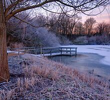Cold Morning in the Park by Keld Bach
